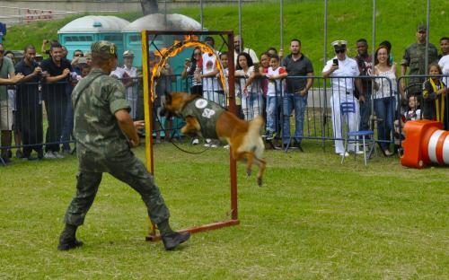 Um dos pontos altos da manhã foi a demonstração de cães