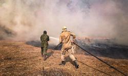 Equipes de brigadistas, bombeiros militares e fuzileiros navais trabalham nos principais focos