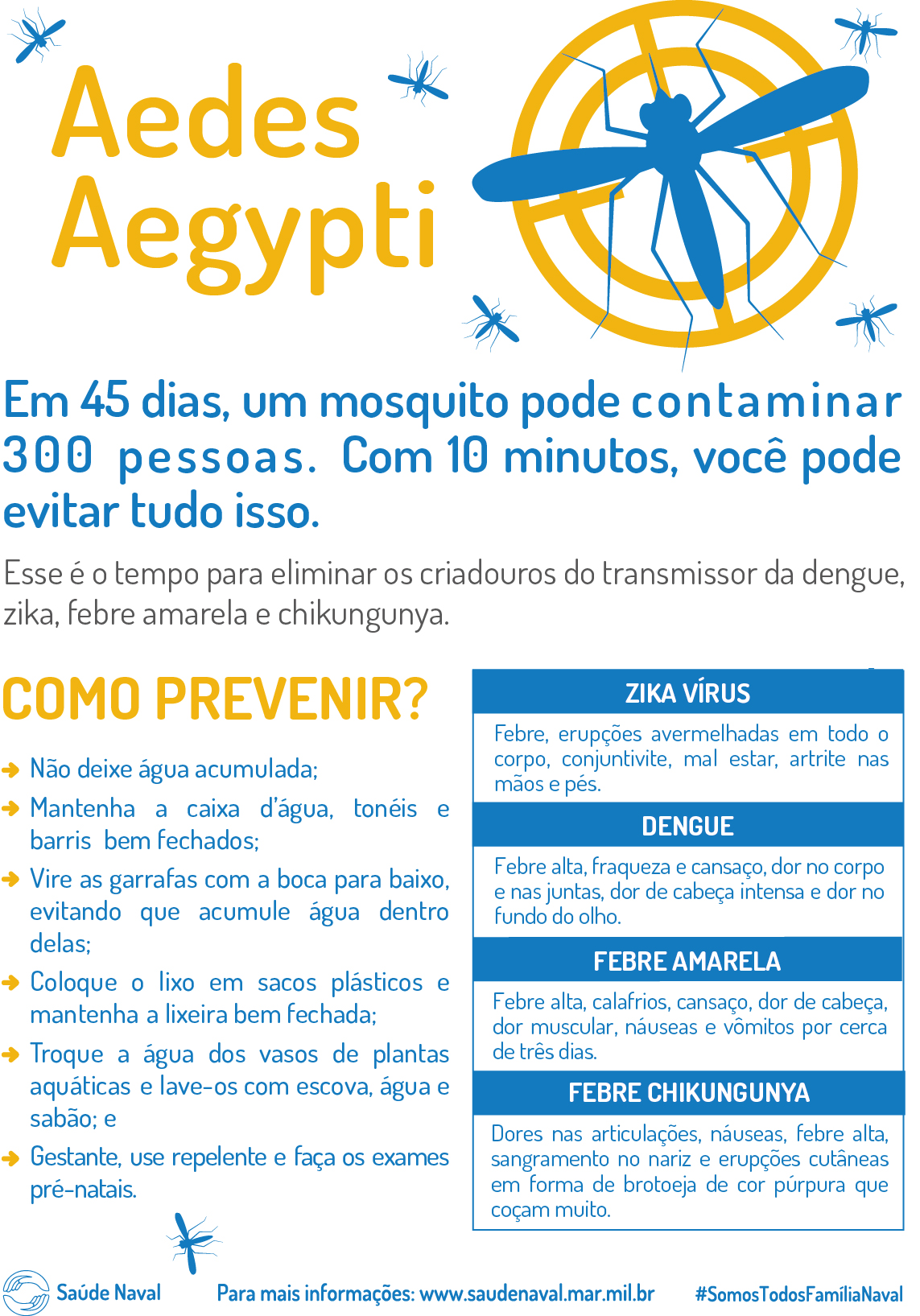 Aedes Aegypt