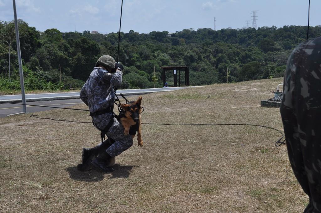 4b32aae2ed5db O curso tem duração de sete semanas e é pré-requisito para os militares  trabalharem em um canil militar.